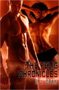 Cover Art for The Felig Chronicles by P. J. Dean
