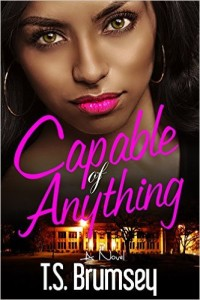 Cover Art for CAPABLE OF ANYTHING by T.S. Brumsey
