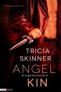 Cover Art for Angel Kin by Tricia Skinner