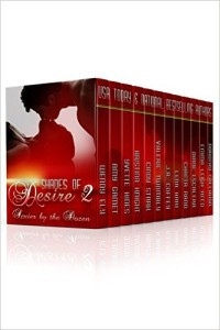Cover Art for SHADES OF DESIRE 2 by Yvette Hines