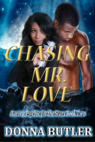 Cover Art for CHASING MR. LOVE by Donna Butler