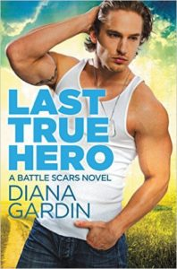 Cover Art for LAST TRUE HERO by Diana Gardin
