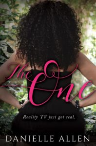 Cover Art for The One by Danielle Allen