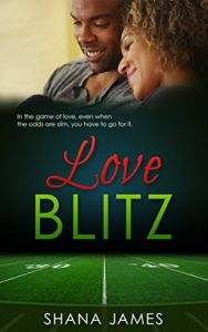 Cover Art for LOVE BLITZ by Shana James
