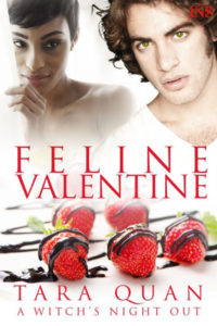 Cover Art for FELINE VALENTINE by Tara Quan