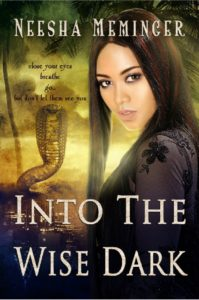 Cover Art for Into the Wise Dark by Neesha Meminger
