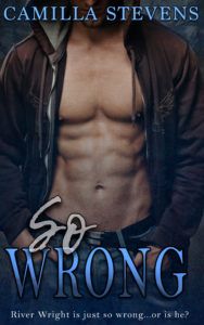 Cover Art for So Wrong by Camilla Stevens
