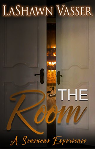 Cover Art for The Room by LaShawn Vasser