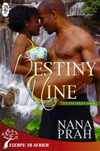 Cover Art for Destiny Mine by Nana Prah