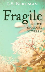 Cover Art for Fragile by L.S. Bergman