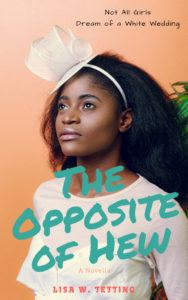 Cover Art for The Opposite of Hew by Lisa W. Tetting