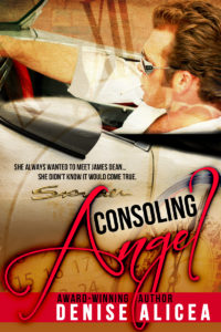 Cover Art for Consoling Angel by Denise Alicea