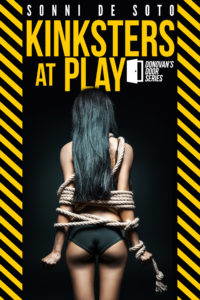 Cover Art for Kinksters at Play by Sonni de Soto