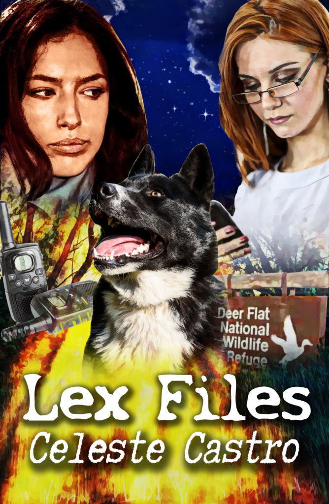 Cover Art for Lex Files by Celeste Castro