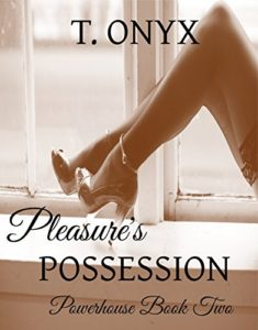 Cover Art for Pleasure's Possession by T Onyx