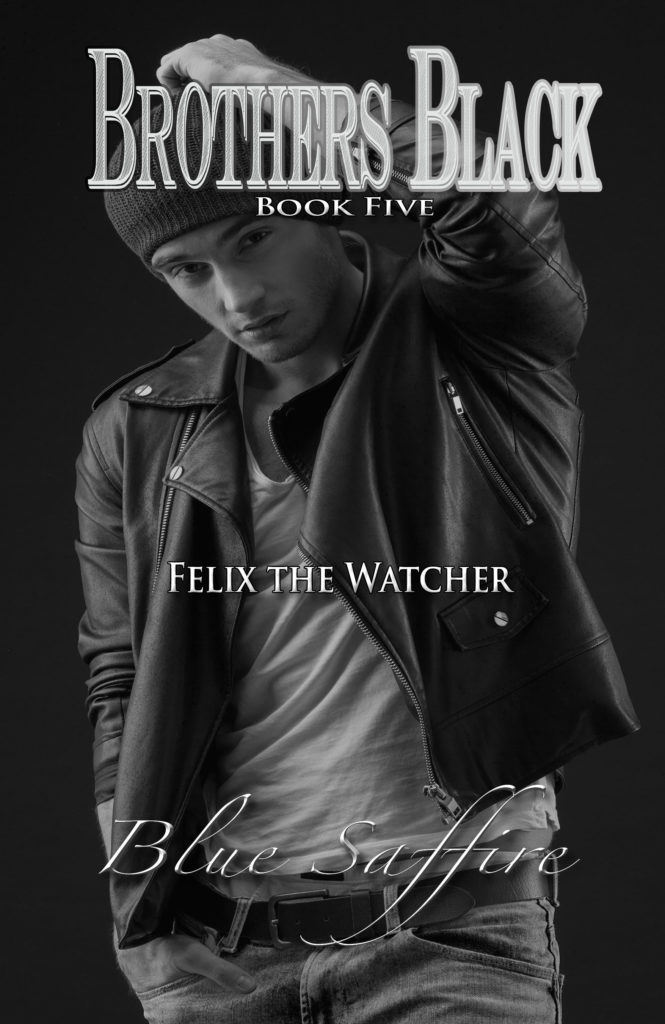Cover Art for Brothers Black 5: Felix the Watcher by Blue Saffire