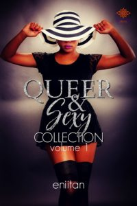 Cover Art for Queer and Sexy Collection Vol 1 by Eniitan