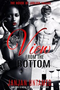 Cover Art for The View from the Top by JanJan  Untamed