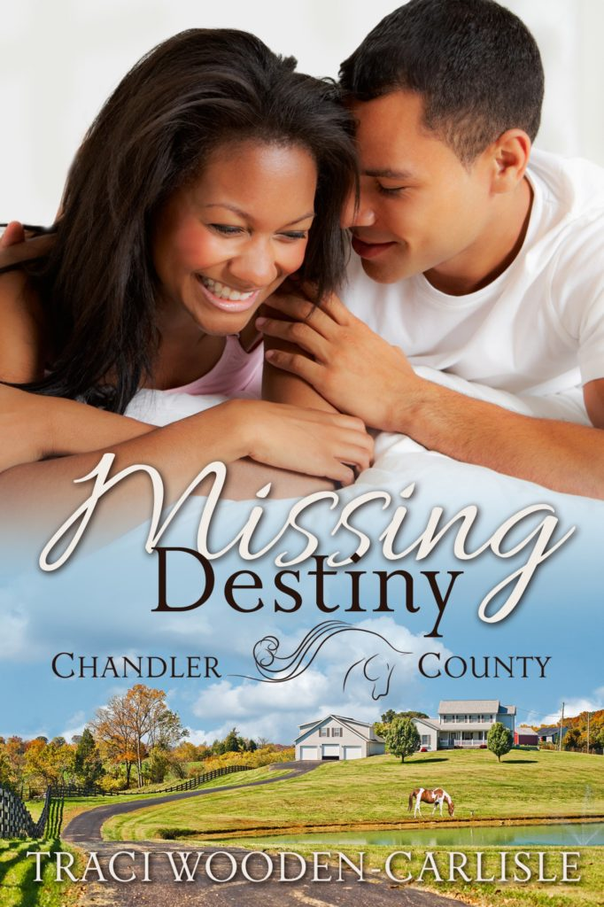 Cover Art for Missing Destiny by Traci Wooden-Carlisle