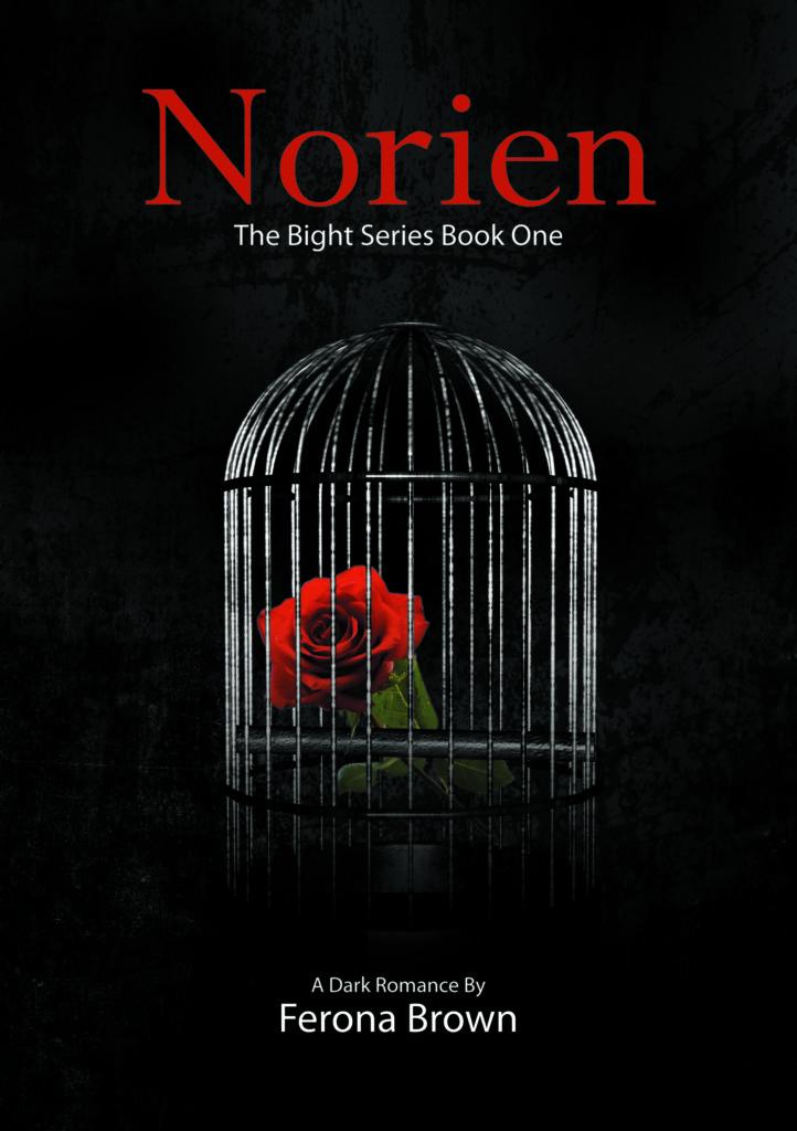 Cover Art for NORIEN by FERONA BROWN