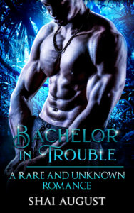 Cover Art for Bachelor In Trouble by Shai August