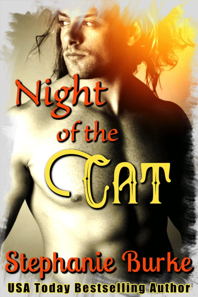Cover Art for Night Of The Cat by Stephanie Burke
