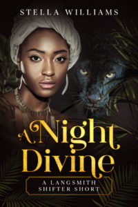 Cover Art for A Night Divine by Stella Williams