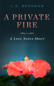 Cover Art for A Private Fire by L.S.  Bergman
