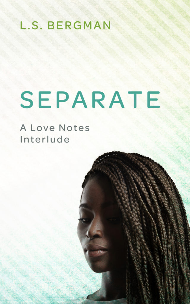 Cover Art for Separate by L.S. Bergman