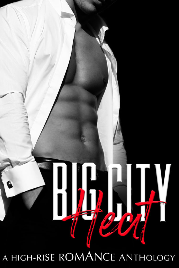 Cover Art for Big City Heat by Maida Malby