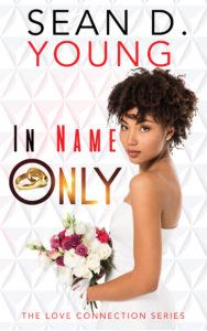 Cover Art for In Name Only by Sean D. Young