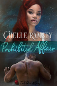 Cover Art for Prohibited Affair by Chelle  Ramsey
