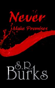 Cover Art for Never Make Promises by S.R. Burks